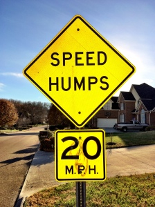 The speed bump sign on our street.