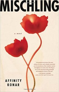 "On a host of ""best of 2016"" book lists: the novel ""Mischling"" by Affinity Konar."