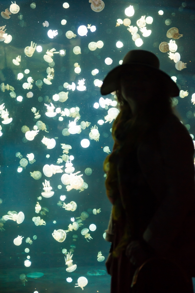 Anna silhouette with jellyfish Vancouver